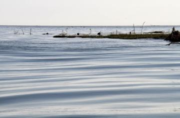 003-katia-bonaventura-photojournalism-foce-isonzo-cigni