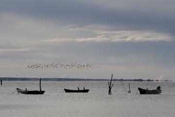 025-katia-bonaventura-photojournalism-barche-grado